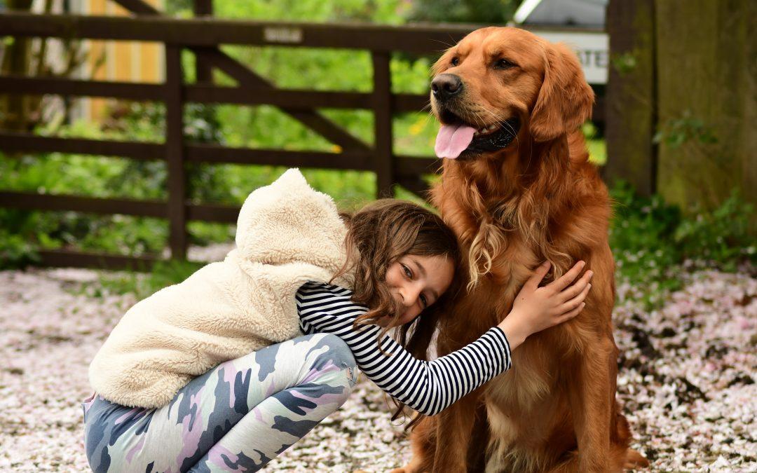 What happens to my beloved pet when I die?